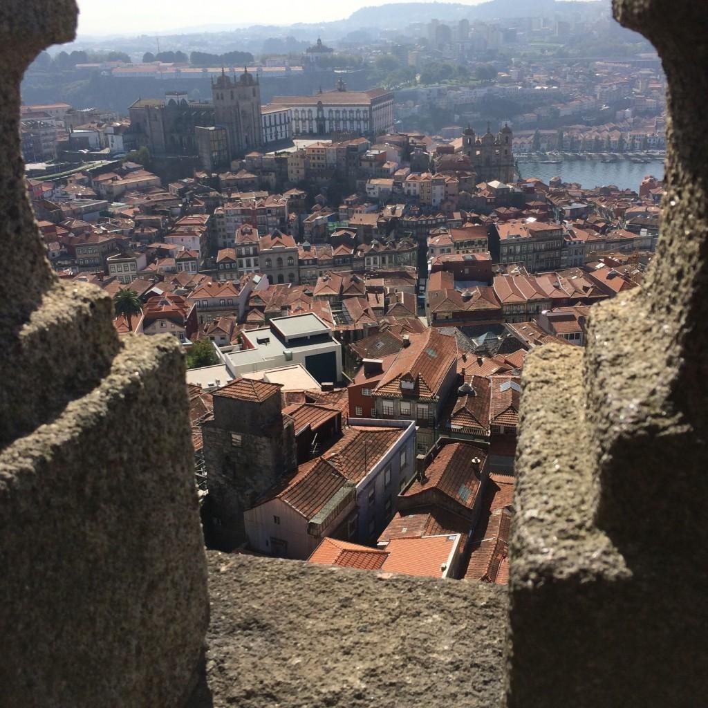 O casario, a Sé, o rio Douro e, na outra margem, a Serra do Pilar vistos do zimbório da Torre dos Clérigos no Porto