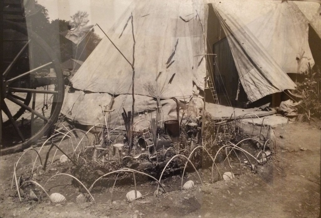 Pequeno canteiro junto a uma tenda de campanha na 2.ª linha do Corpo Expedicionário Português, na I Guerra Mundial