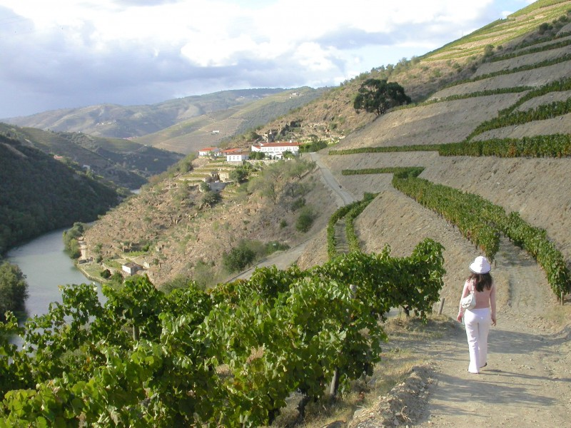 Vera Dantas walking in the Douro Vineyards