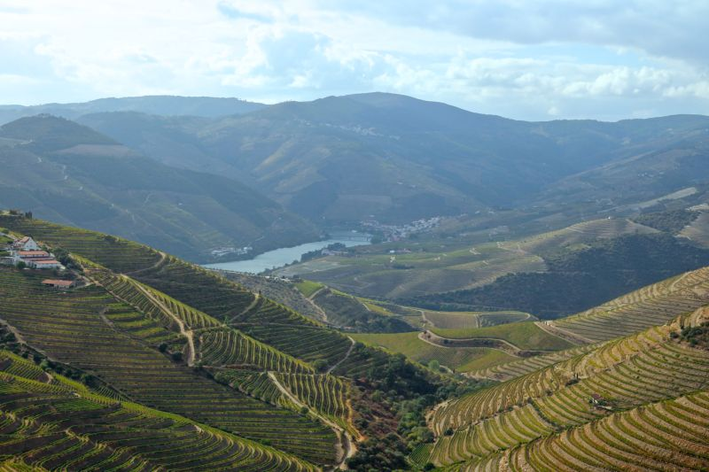 Vista do Douro Vinhateiro