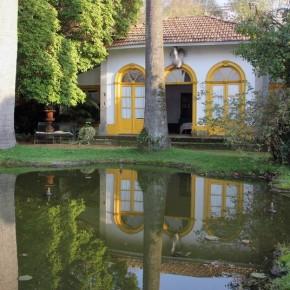 Villar d'Allen Lake house and palm trees