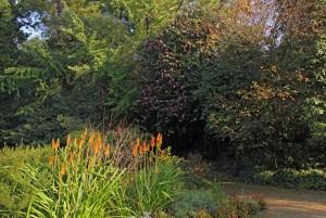 Villar d'Allen romantic garden