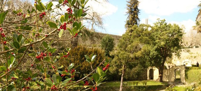 Virtudes Garden, a vertical landscape retreat in the heart of Porto | Jardim das Virtudes