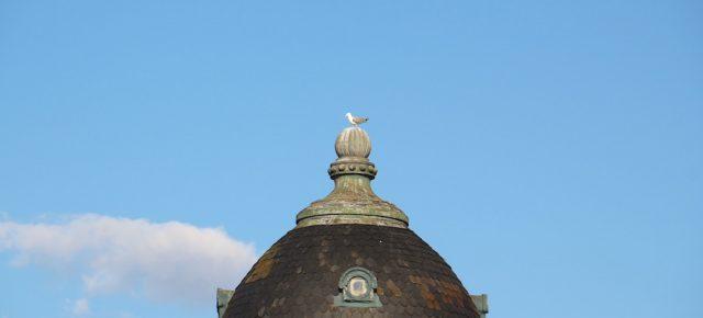 Beautiful Dome in Porto