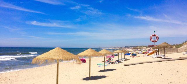 Bem-vindo Verão! | Welcome summertime!