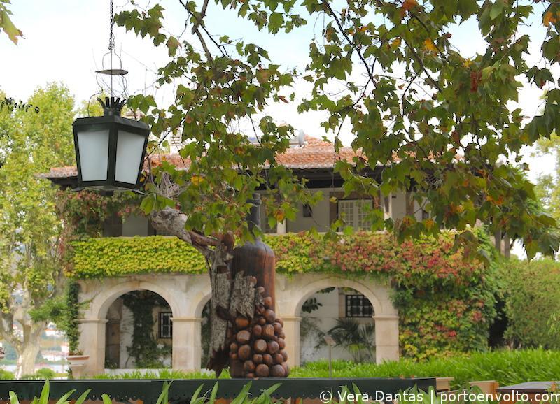 Viagem às Vindimas no Douro - Quinta da Pacheca