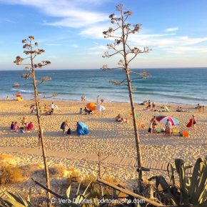 Algarve beaches: why I love them and you will too